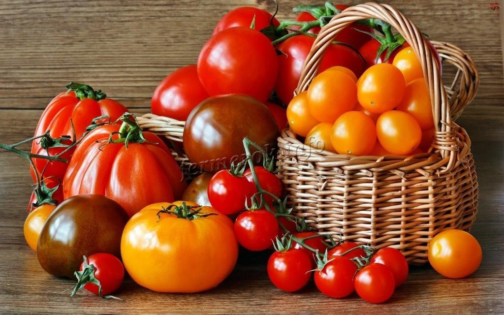 Разные сорта томатов для теплицы