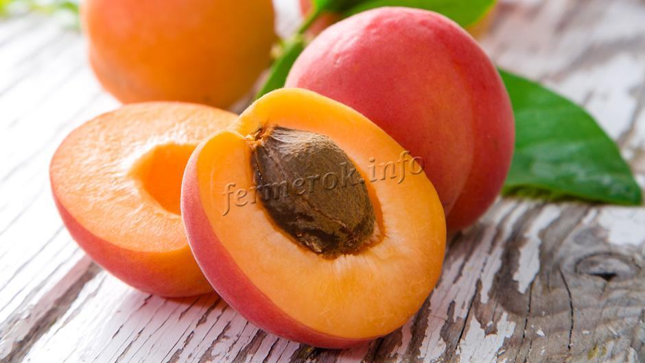 Основные полезные свойства персика