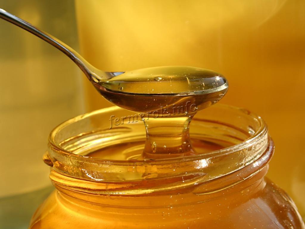 Фото качественного меда