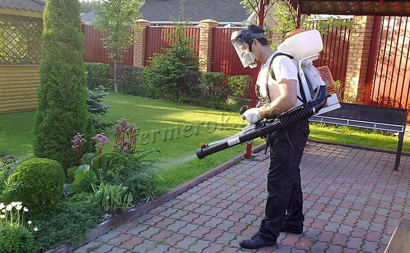 Применение медного купороса в садоводстве