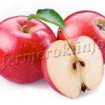 Ранние сорта яблонь с описанием