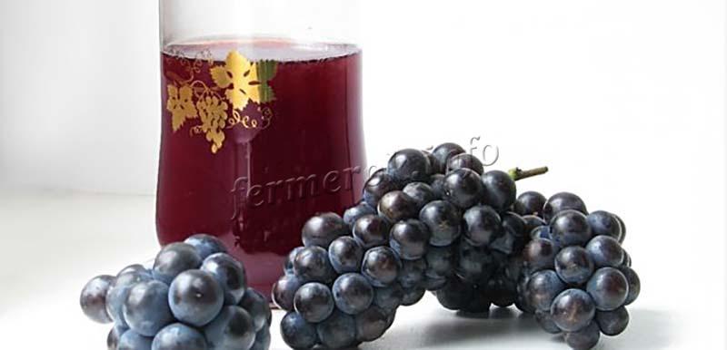 Отзывы о винограде Амурский