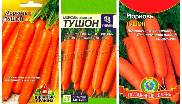 Морковь сорт Тушон