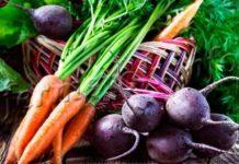 Фото моркови и свеклы