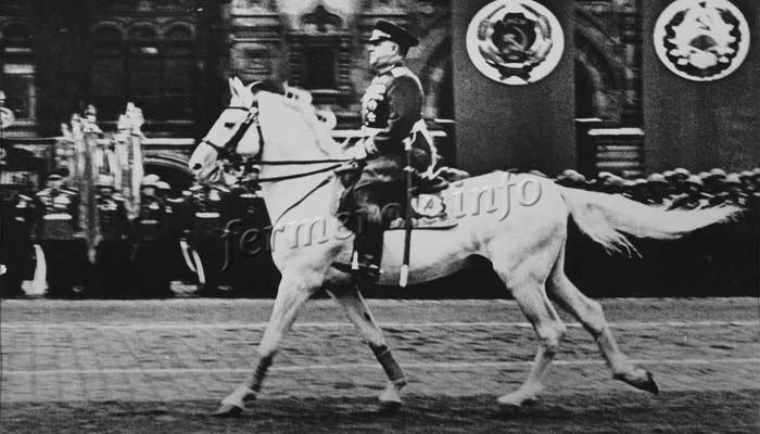Фото маршал Жуков на белом коне Кумир Терской породы