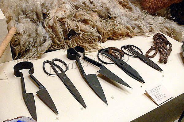 Фото ножниц для стрижки овец