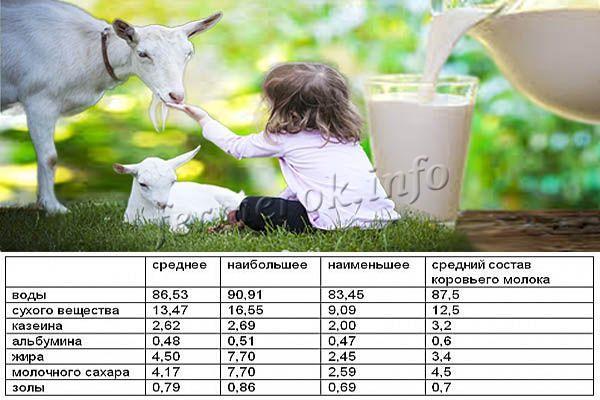 Химический состав козьего молока