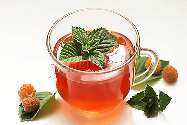 Из листьев малины можно заваривать чай