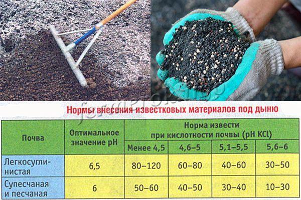 Подготовка почвы перед посадкой дыни