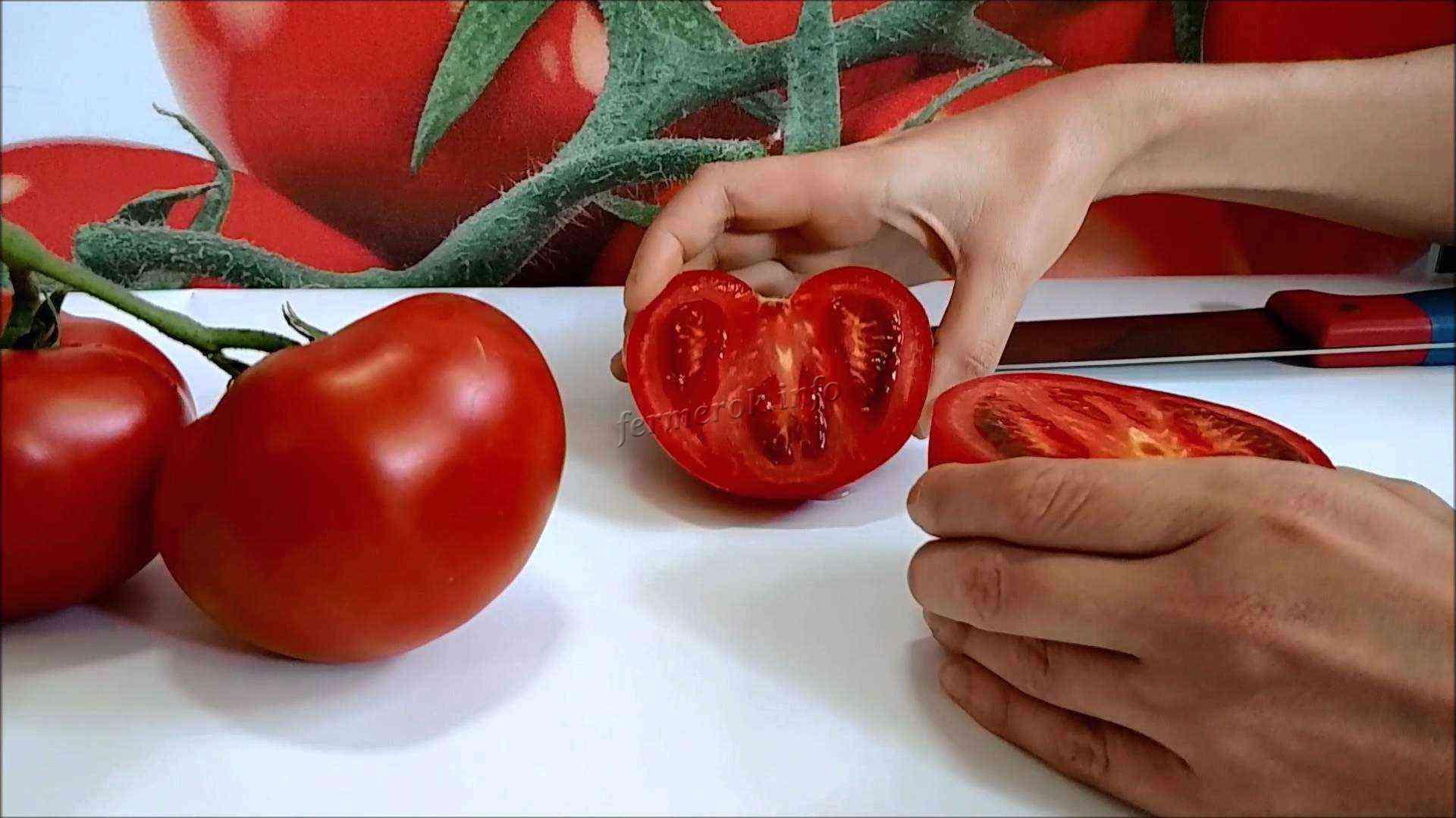 как собрать семена томатов в домашних условиях