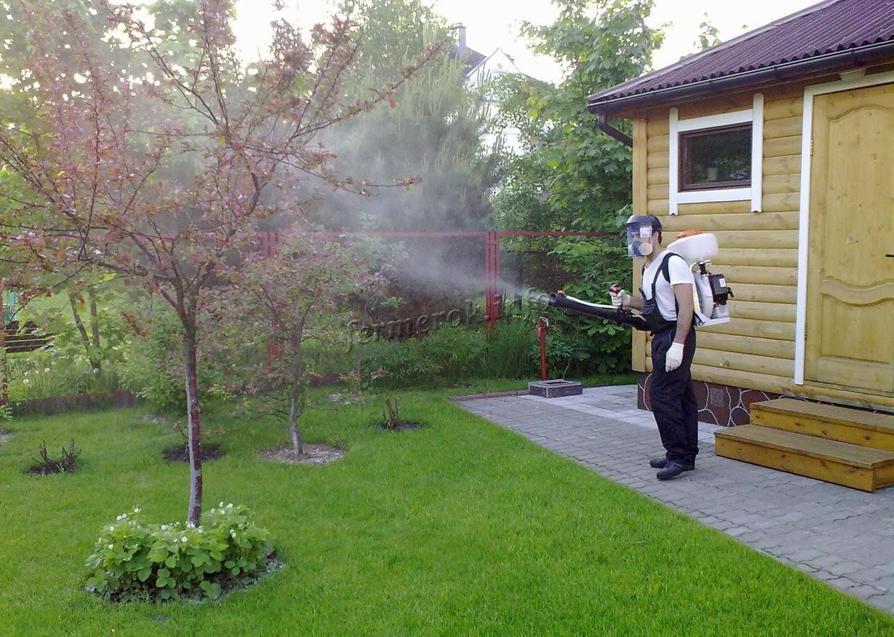 Обработка деревьев весной от болезней
