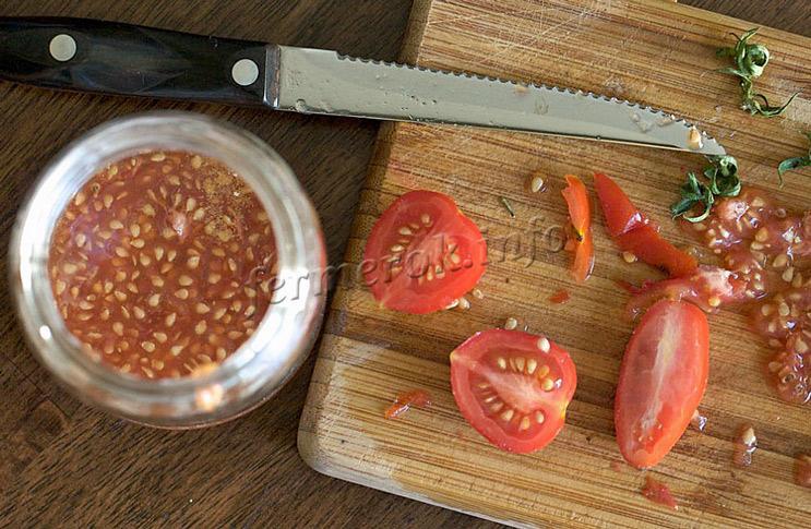 Как правильно собрать семена помидоров на рассаду?