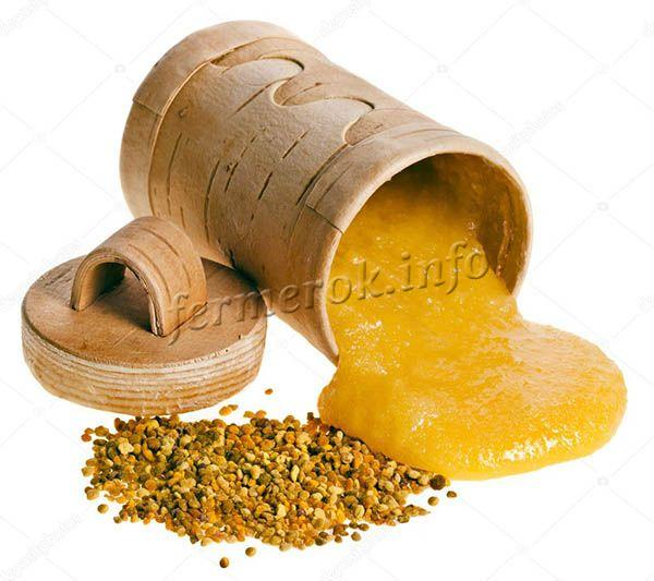 Если смешать пыльцу с медом, полезные свойства и срок хранения увеличатся
