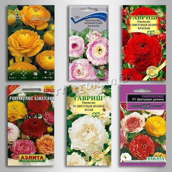 Семена цветов Ранункулюса