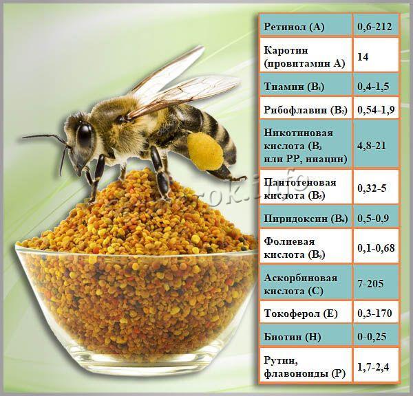 Содержание витаминов в 100 г пчелиной обножки, мг