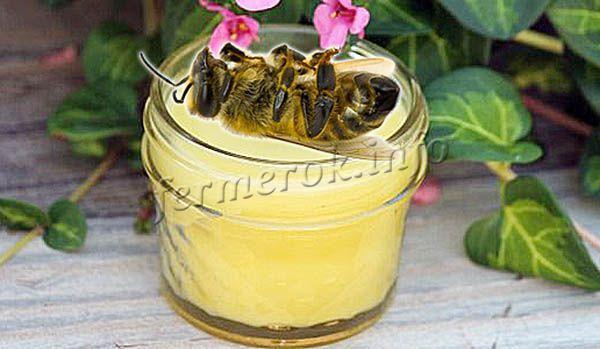 Мазь из пчелиного подмора не стоит наносить на лицо и вообще на любую часть головы