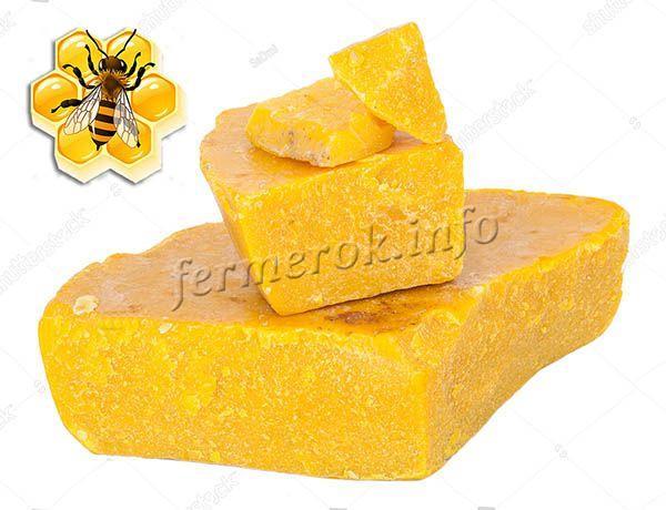 Пчелиный воск – это продукт жизнедеятельности пчел