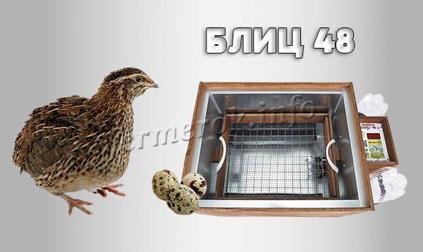 Фото инкубатора для перепелов «БЛИЦ 48»