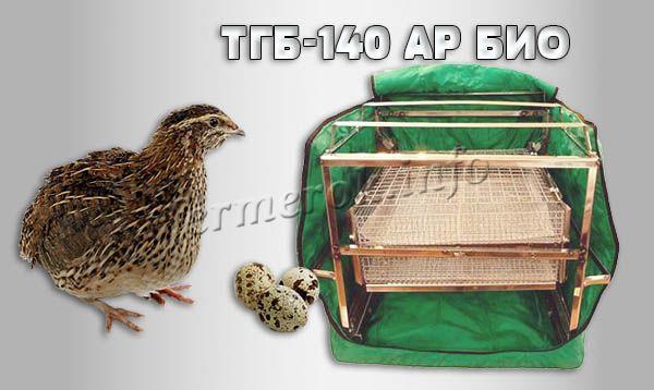 Фото инкубатора для перепелов «ТГБ-140 АР БИО»