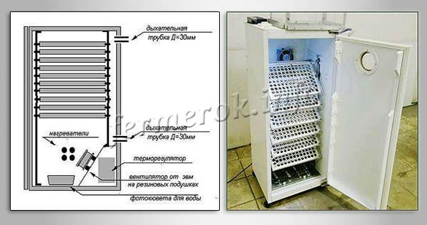 Схема и инкубатор и для перепелов из холодильника