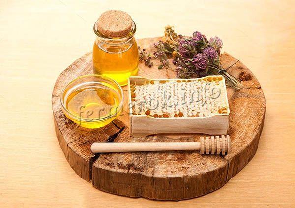 Клеверный мед с давних времен считается целебным