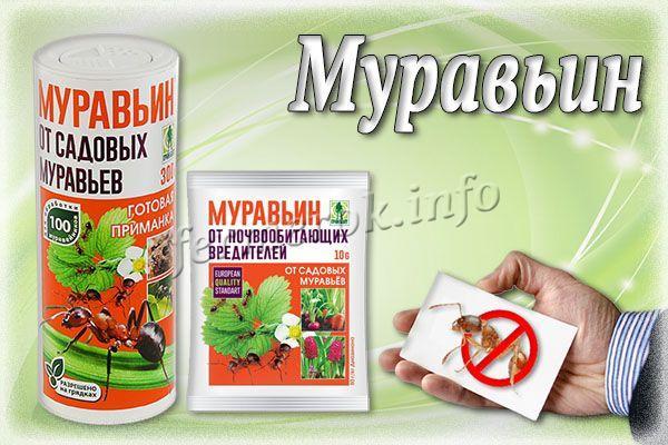 Муравьин - эффект заметен на 3-5 сутки