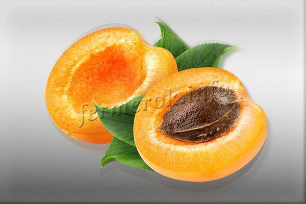 Мякоть оранжевая, освежающе-сладкая, костянка большая, от мякоти отходит без проблем, ядро сладенькое