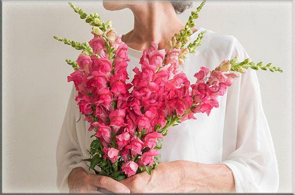 Собраны цветочки в длинные колоски