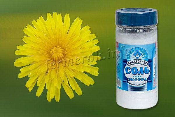Соль – самый простой способ избавиться от сорняков на участке