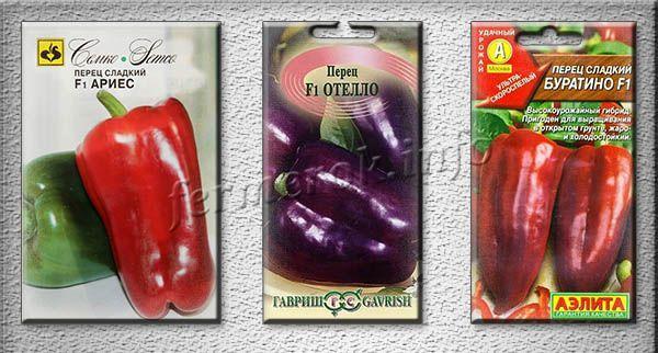 Урожайные сорта перца для средней полосы России