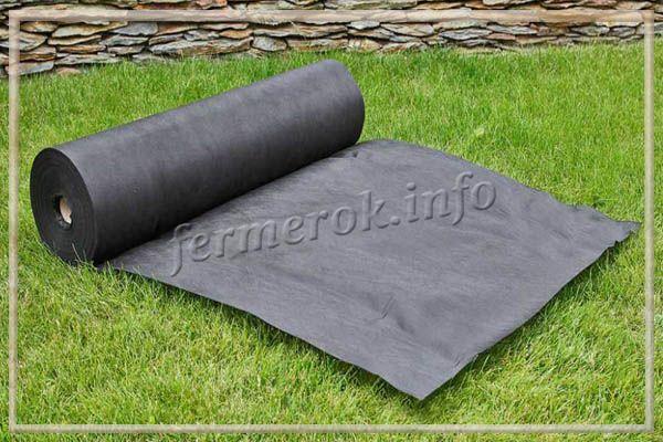 Черное агроволокно используется как мульча или укрывной материал для растений
