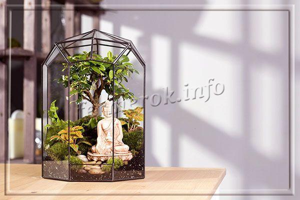 Флорариум «Дзен» с деревцем бонсай и фигуркой Будды