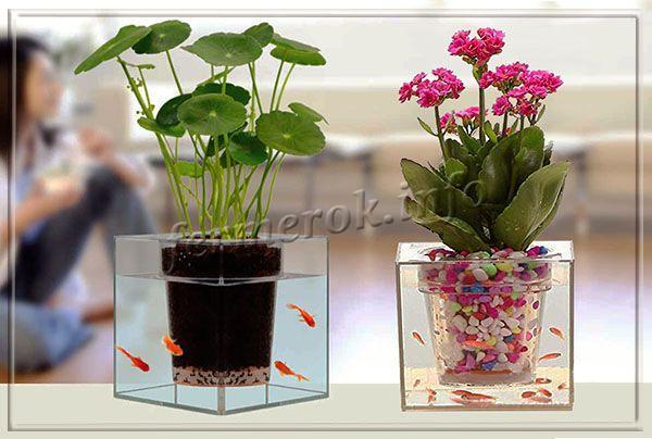 Креативный горшок для цветов с автополивом и аквариумом