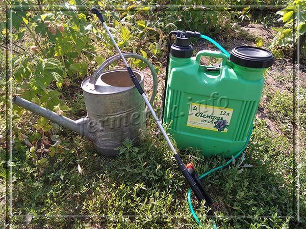 Садовый опрыскиватель – это аппарат, при помощи которого можно проводить опрыскивание сада или огорода
