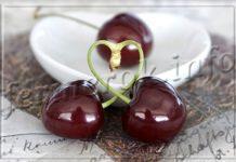Чудо-вишня - гибрид вишни и черешни