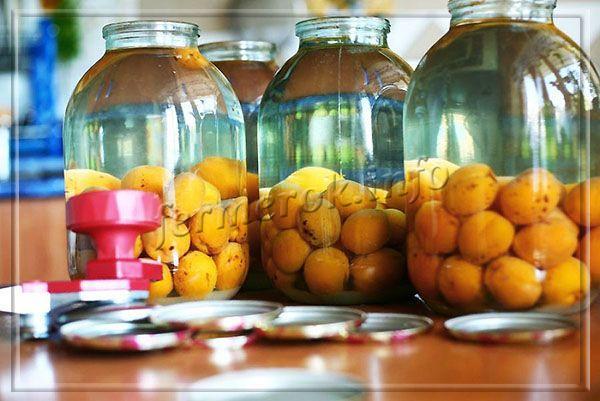 Простой рецепт компота из абрикосов