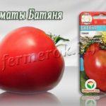 Сорт томатов Батяня
