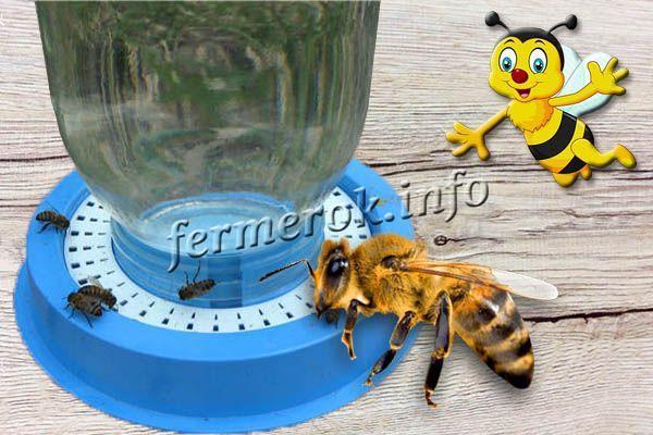 Фото вакуумной поилки для пчел