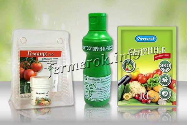 Биологические инсектициды для помидор