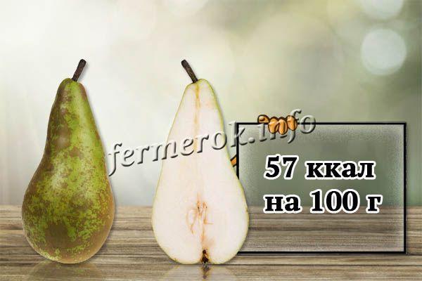 Калорийность груш Конференция всего 57 ккал на 100 г