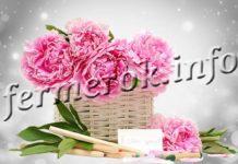 Цветы Пион древовидный