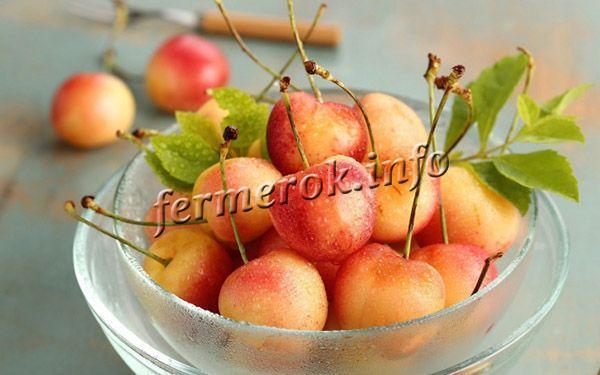 Для употребления в свежем виде ягоды нужно собирать после полного созревания