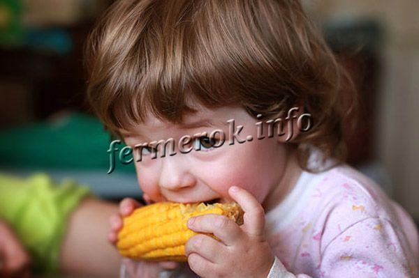 Кукуруза для деток не только полезна, но и необходима