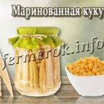 Маринованная кукуруза
