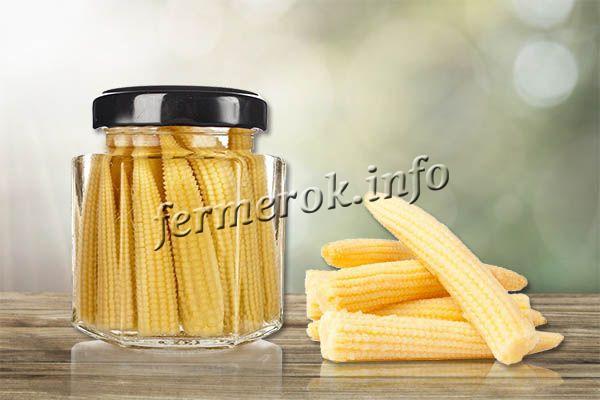 Маринованная кукуруза на зиму в початках