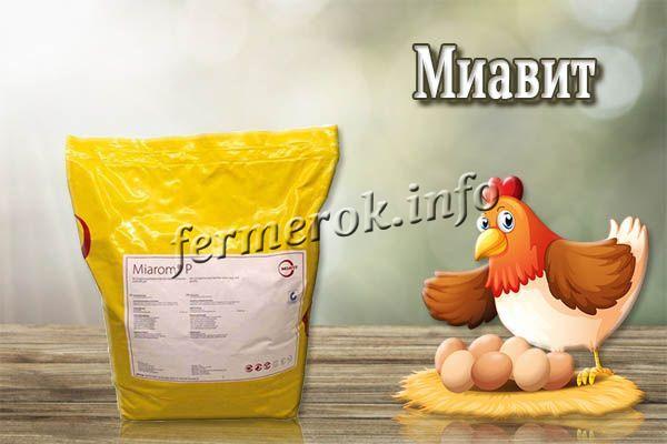 «Миавит» – комплекс из витаминов, минералов, наполнителя