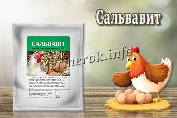 «Сальвавит» – витаминно-минеральный комплекс с обилием железа, цинка, меди, витаминов A, E, D, B, K, H