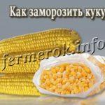 Как заморозить кукурузу на зиму