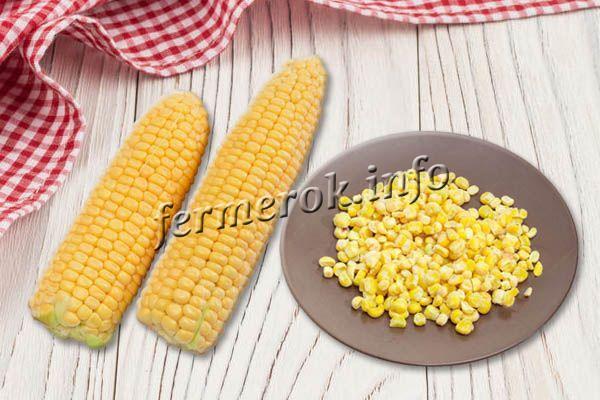 При замораживании в зернах сохраняется максимум питательных веществ
