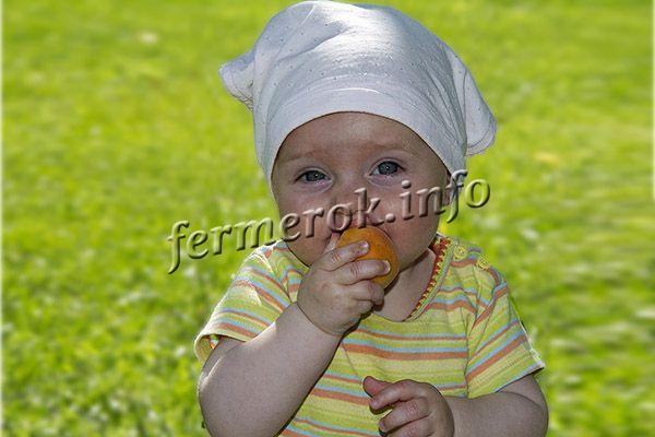 Урожай пригоден для переработки, сушки, заморозки, но вкуснее всего абрикос Царский кушать в свежем виде